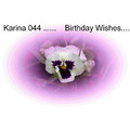 Karina 044 Birthday Wishes