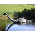 Nessie scotland monster rare find fantastic reward