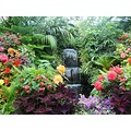 Garden Flowers Floral waterfall