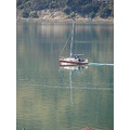 reflectionthursday archives Otago Harbour Dunedin NZ littleollie