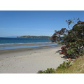 Island of WAIHEKE, North Island, New Zealand