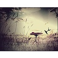 artistic image surreal abstract poem art of love hearts classic keitology