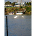 Tamaki Estuary Auckland  View from Panmure Bridge Boating & Yacht Club not long after sunrise....