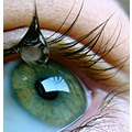eye green waterdrop eyelashes closeup