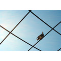 pigeon wire square sky blue shapefriday