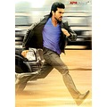 Yevadu Movie Latest PhotosYevadu Movie PicsYevadu Movie ImagesYevadu Movie St
