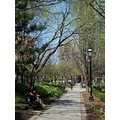 At 3:30pm.St.James Park-St.Lawrence Market District-Toronto,Ont.,On Friday,May 3,2013
