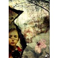 tale story illustration alba alma keriz cattberry flower fleur cat photog