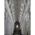 Cathedral roof arches groynes