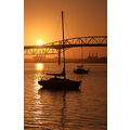 sunrise auckland harbour bridge yacht