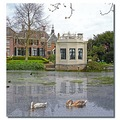 netherlands edam architecture water reflectionthursday nethx edamx archn waten