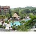 Animal Kingdom Lodge Hotel Disney Swimming Pool Moofygirl