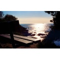 sky sea horizon tree bench blue