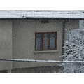 winter snow white window tree bulgaria