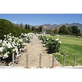 vacation africa franschhoek churchsunday