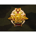 IMGAward insignia Armored forces