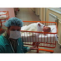 baby father hspital belgrade serbia