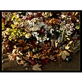 nature still life flowers candles stone autumn leaves