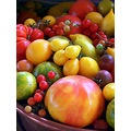 red tomatos fruit skoenlaper yellow orange green