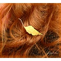 leaf hair compftorange