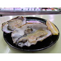 oysters seafoodfriday