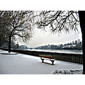 bank snow lonely white rhine river cold