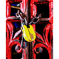 padlock red yellow