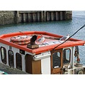 england cornwall padstow boats birds