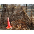orange cone chainlink fence overgrown