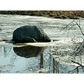 stream ice rock reflections reflectionthursday