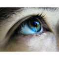 eye pupil iris blue