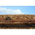 peatbank peat fire burning scotland