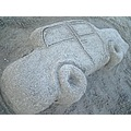 car sand beach animals fish cats dogs stuf cool lake deer cute elk zoo