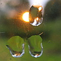 reflectionthursday macro raindrop sunset window