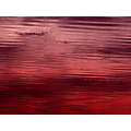 michelledemery abstract landscape water reflection color