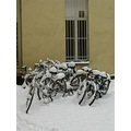 bicycles snow