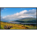 Cloghane Log Kerry Ireland Peter_OSullivan