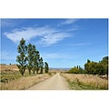 Otago Rail Trail at Chatto Creek, NZ.  Once a railway track and now a very popular cycle and wa...