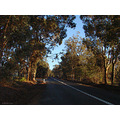 road country early morning perth hills littleollie