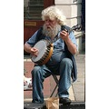 music old man musician beard grey