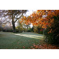 autumn at rosemoor garden