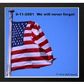 St Louis Missouri MO US USA flag 911 9_11 13years will_not_forget