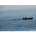 fishing sea concon chile