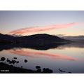 reflectionthursday pink sky harbour dunedin littleollie