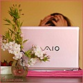 laptop pink flowers frustration