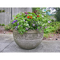 seattle seattlefph park freewaypark planter flowers concrete