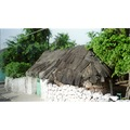 ROADSIDE NEAR CANCUN.  TYPICAL AND TRADITIONAL HOME FOR ONE FAMILY.  ONE DOOR.  ONE HAMMOCK. EA...