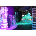 Series Icesculptures Art Ice Zwolle