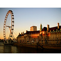 county hall sunset london thames londoneye