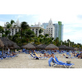 zuiderdam cruise palmbeach aruba beach hotels people view